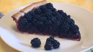 Wild Blackberry Tart