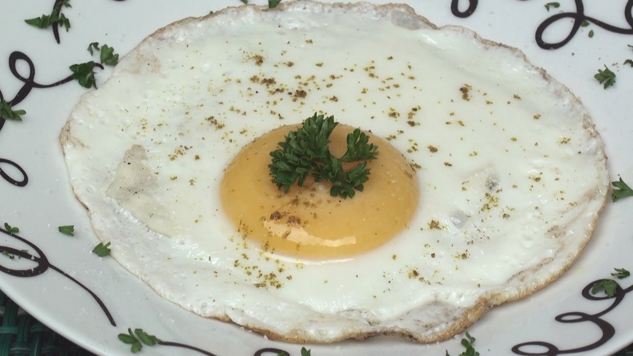 Cheese Fried Egg